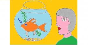 goldfish 79